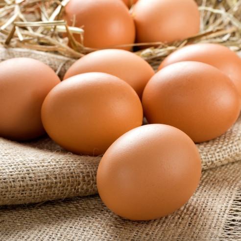 Αυγά Μεγάρων Ελευθέρας Βοσκής