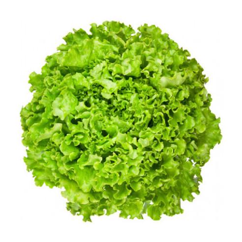 Λόλα Πράσινη Ελληνική Ποιότητα Α΄